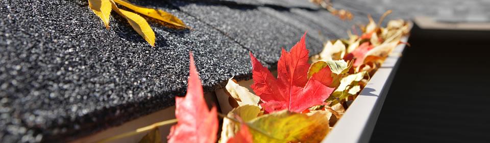 rood-gele bladeren in dakgoot